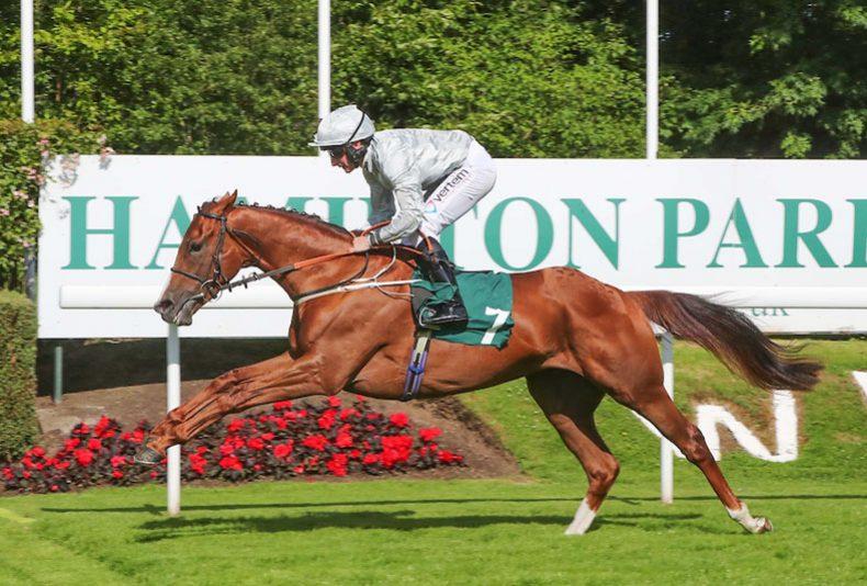 photo: Almada Raceday