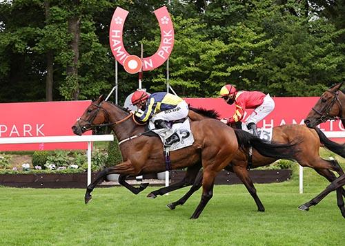 Almada Raceday
