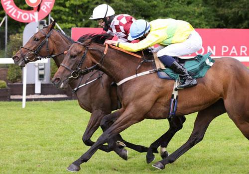 Family Racenight, Saturday 9 July