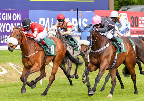 Afternoon Raceday, Wednesday 15 June